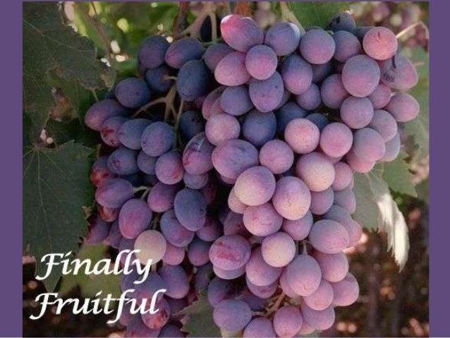 Finally Fruitful (Par1, Love and Power)