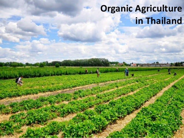 thesis on adoption of organic farming Effect of socio-economic characteristics of farmers on their adoption of organic farming practices 213 legumes, green manures, off-farm organic waste, appropriate mechanized cultivation or.