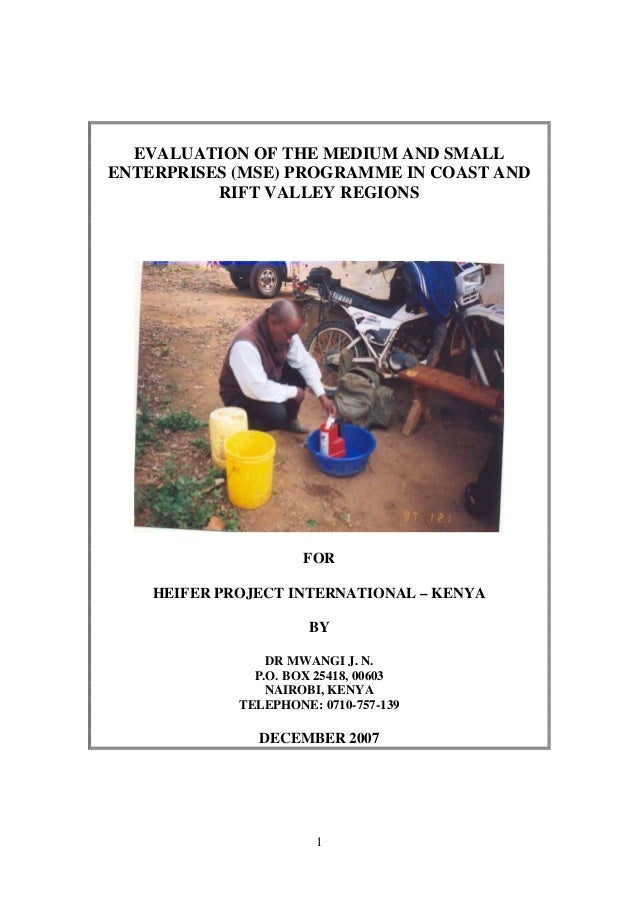 EVALUATION OF THE MEDIUM AND SMALLENTERPRISES (MSE) PROGRAMME IN COAST AND          RIFT VALLEY REGIONS                   ...