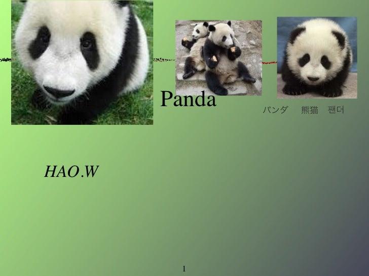 Final non fiction hao weng no fiction project panda