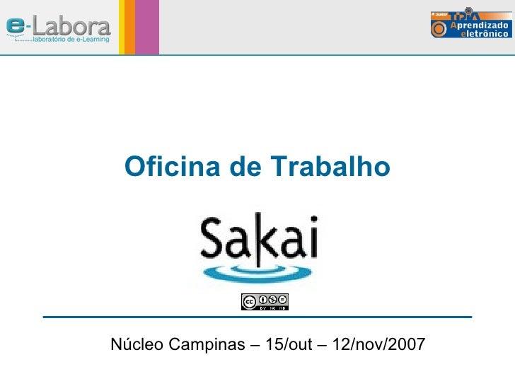 Oficina de Trabalho Núcleo Campinas – 15/out – 12/nov/2007