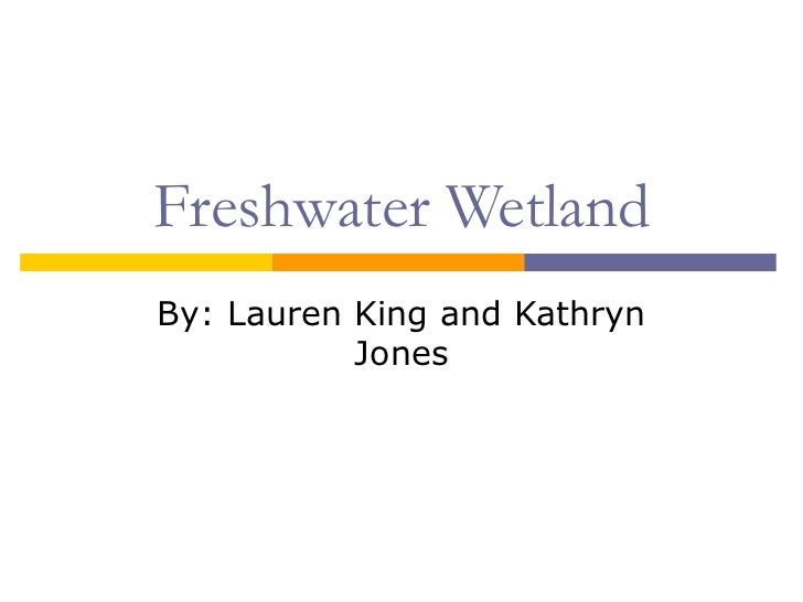 Freshwater Wetland By: Lauren King and Kathryn Jones