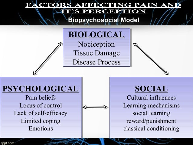 the biopsychosocial model essay
