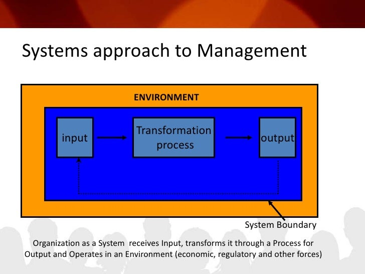 project management systems approach pdf