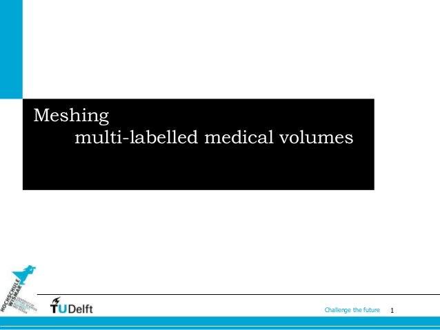 Master thesis medicine