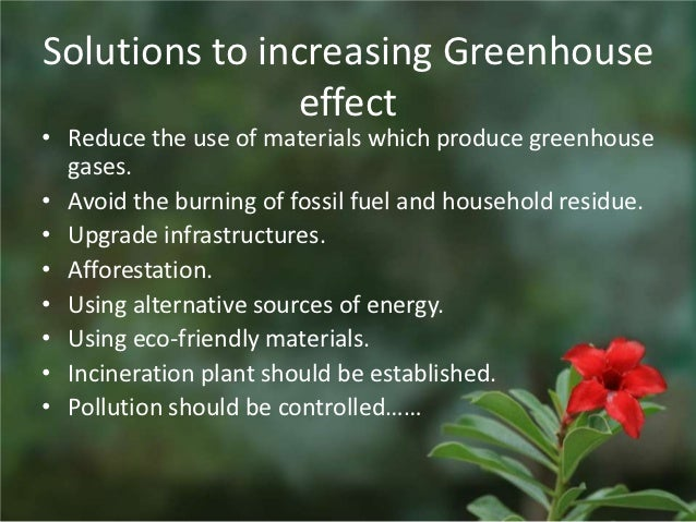 essay of afforestation Afforestation refers to the plantation scheme for the new forest on the earth it is the great scheme for developing the plantation, which is very helpful for improving the greenery on the planet the branches of a tree, begin from a single seed.