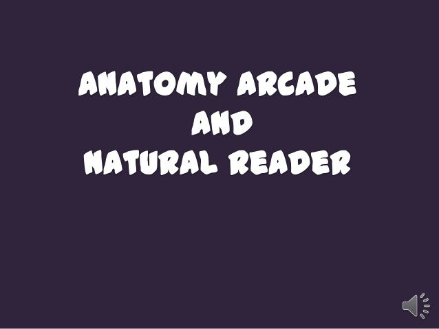 http://anatomyarcade.com