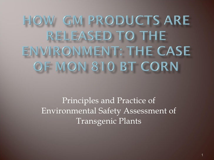 Principles and Practice of Environmental Safety Assessment of Transgenic Plants