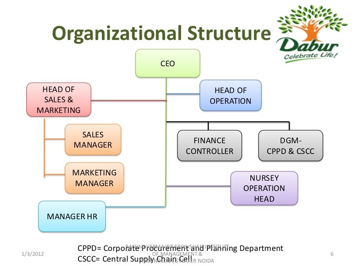 corporate business structures