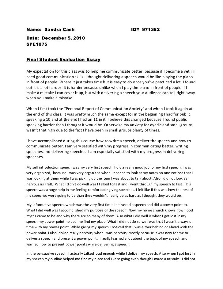 gun control essay outline