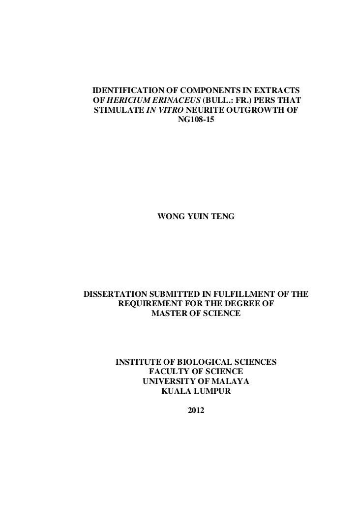 Thesis pdf