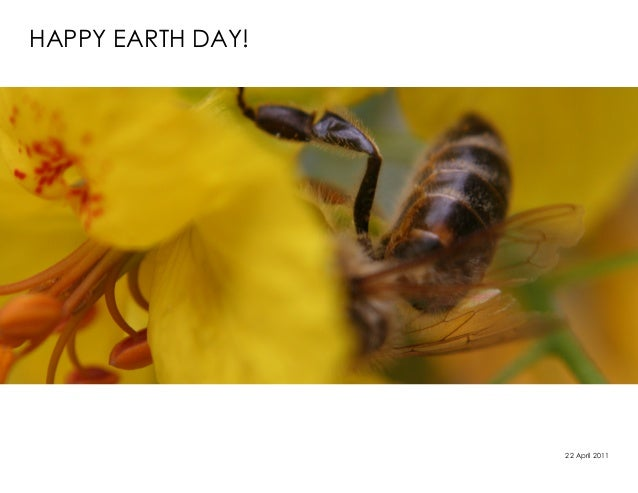 HAPPY EARTH DAY!                   22 April 2011