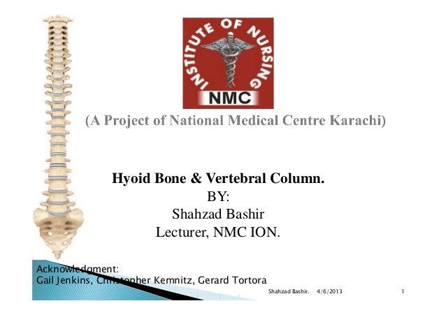 Hyoid Bone & Vertebral Column.                              BY:                        Shahzad Bashir                     ...