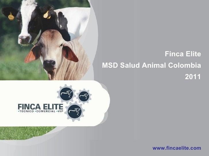 Finca Elite MSD Salud Animal Colombia 2011 www.fincaelite.com