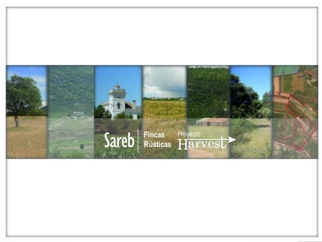 Fincas rusticas. proyecto harvest sareb