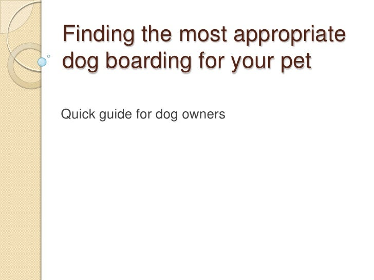 Finding the most appropriate dog boarding for your pet<br />Quick guide for dog owners<br />