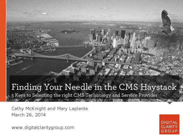 Finding Your Needle in the CMS Haystack 5 Keys to Selecting the right CMS Technology and Service Provider Cathy McKnight a...