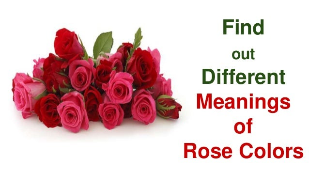 Find out different meanings of rose colors for What colors make rose