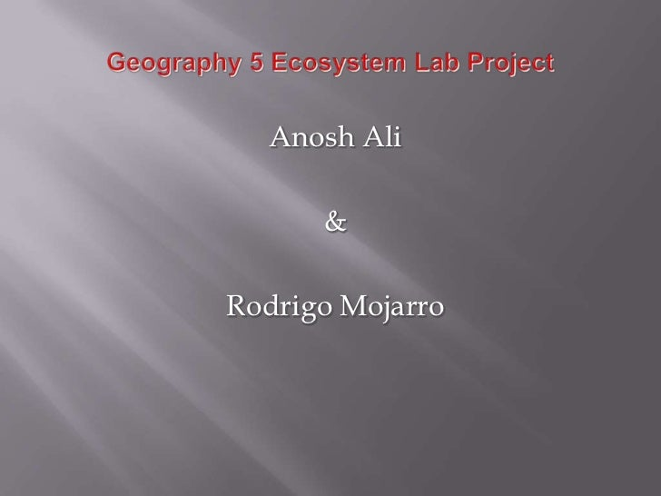 Anosh Ali      &Rodrigo Mojarro