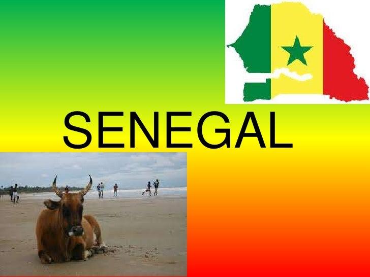 Senegal- Matthew & Tim