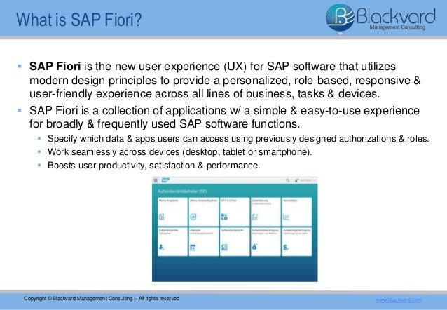 Introduction Into Sap Fiori