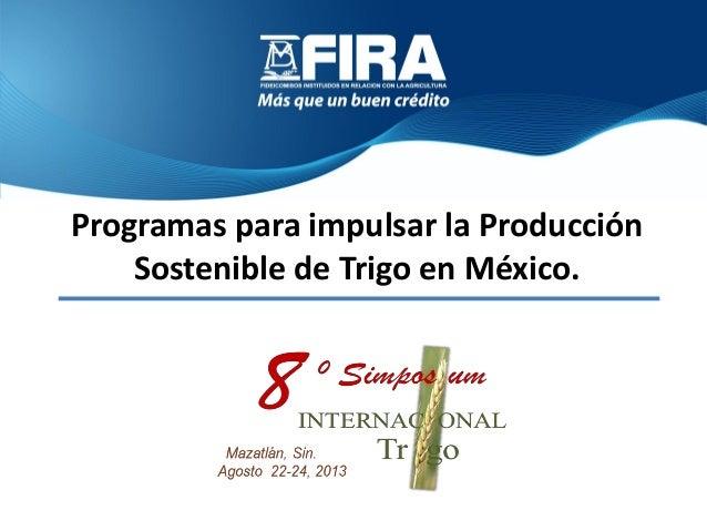 Programas para impulsar la Producción Sostenible de Trigo en México