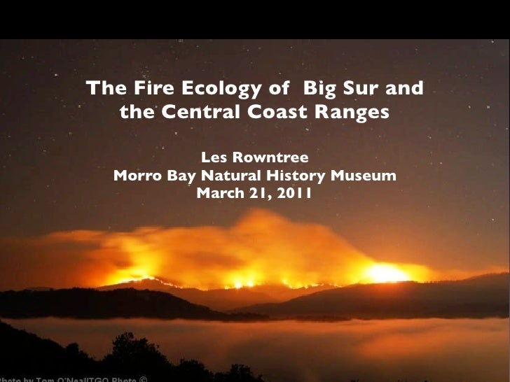 The Fire Ecology of Big Sur and  the Central Coast Ranges            Les Rowntree  Morro Bay Natural History Museum       ...
