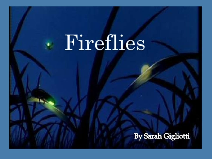 Fireflies<br />Fireflies<br />By Sarah Gigliotti<br />