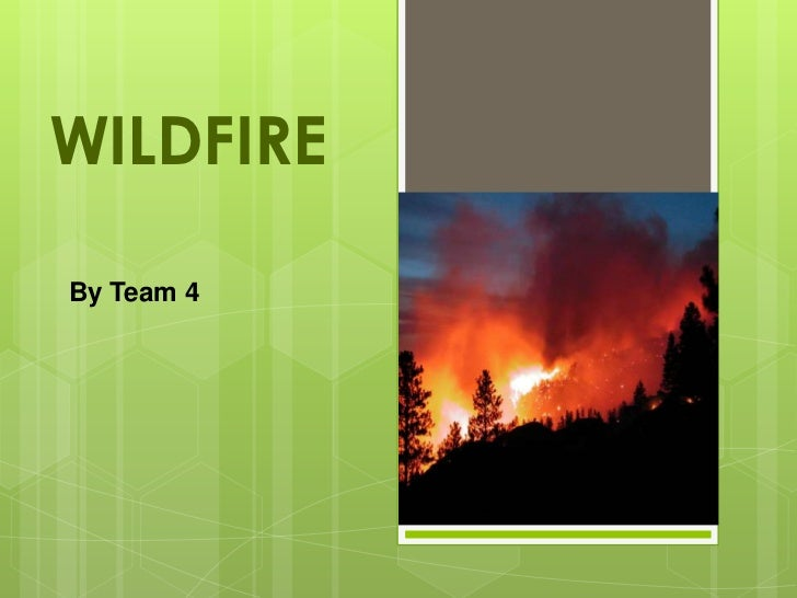 Fire prevention Team4