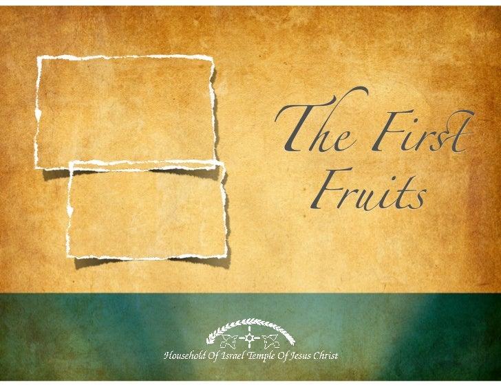 The Fir! Fruits