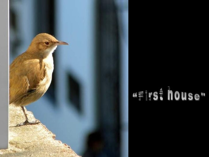 First house [en]