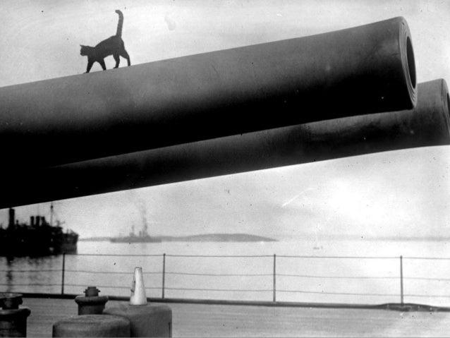 First World War Centenary:  WW I in Photos (3)