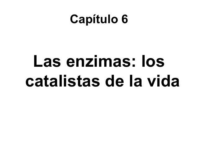 Capítulo 6 Las enzimas: los catalistas de la vida