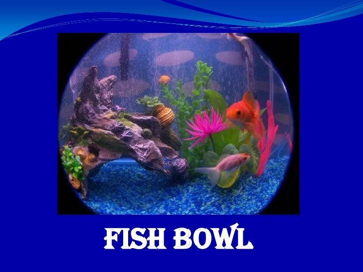 Fish Bowl<br />