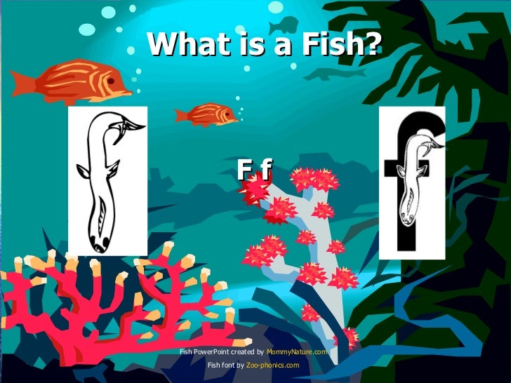 What is a Fish? F f Fish PowerPoint created by  MommyNature.com Fish font by  Zoo- phonics.com
