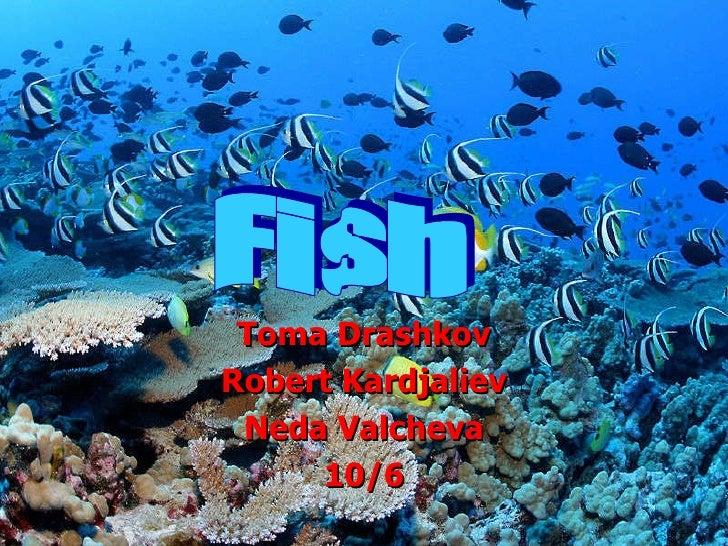 Fish drashkov kardjaliev valcheva 10 6