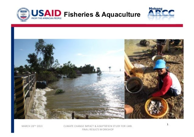 Mekong ARCC - Final Workshop -  Fisheries Study