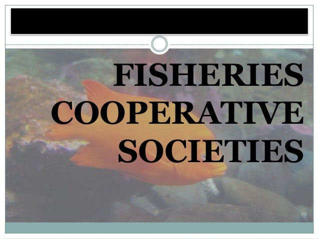 FISHERIESCOOPERATIVE   SOCIETIES