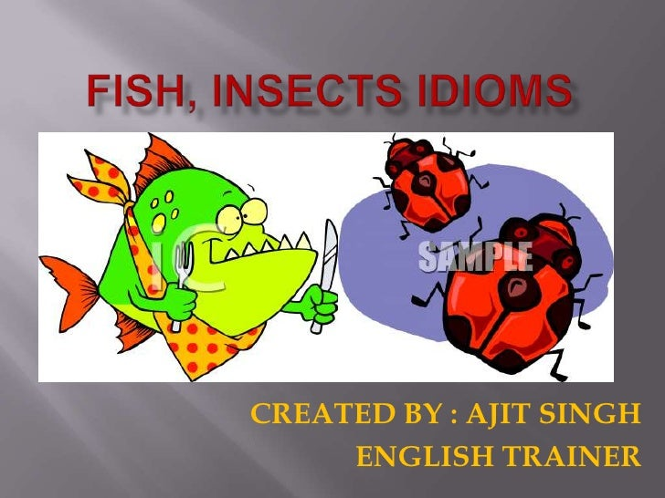FISH, INSECTS IDIOMS<br />CREATED BY : AJIT SINGH<br />ENGLISH TRAINER<br />