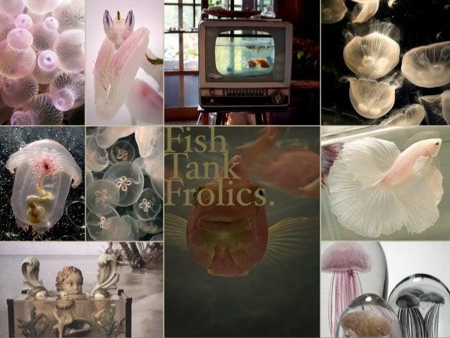 Fishtank Frolics