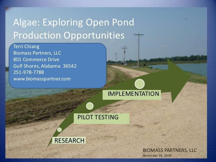 Algae: Exploring Open Pond Production Opportunities<br />Terri Chiang<br />Biomass Partners, LLC<br />801 Commerce Drive<b...
