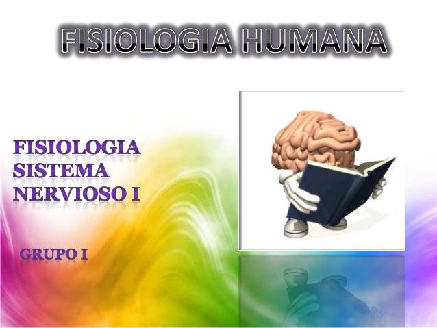 Fisio.08 2013 sistema nervioso