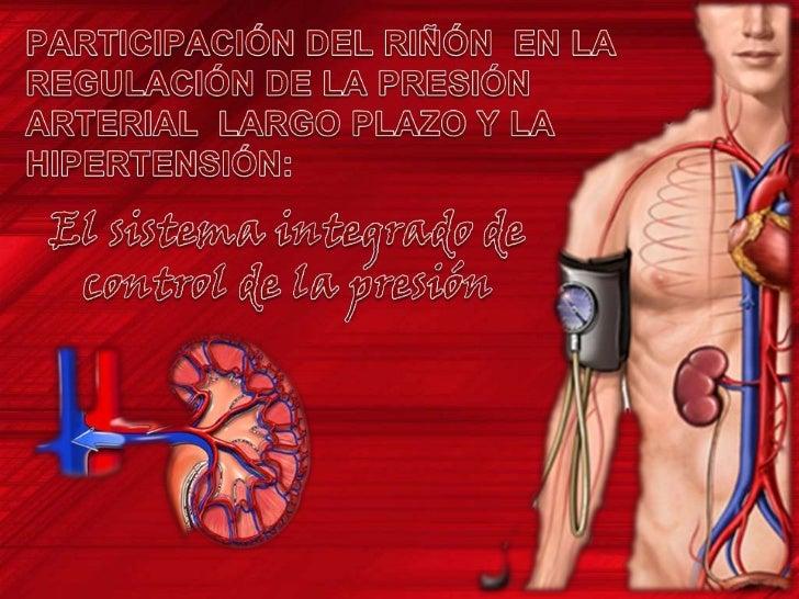 Fisiologia-El riñon y la Regulacion de la Presion Arterial