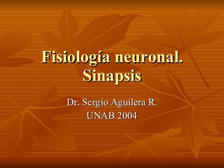 Fisiología neuronal. Sinapsis Dr. Sergio Aguilera R. UNAB 2004