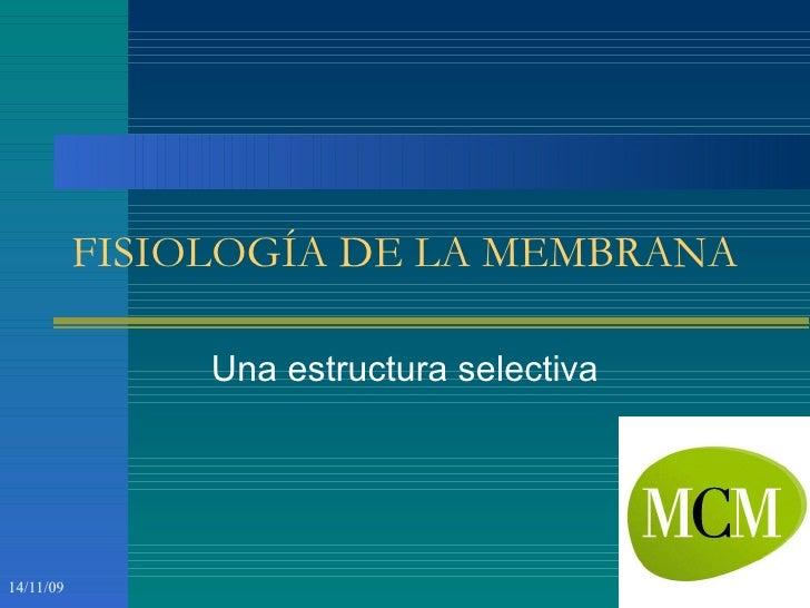 FISIOLOGÍA DE LA MEMBRANA Una estructura selectiva