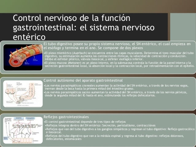 compendio fisiologia medica guyton pdf