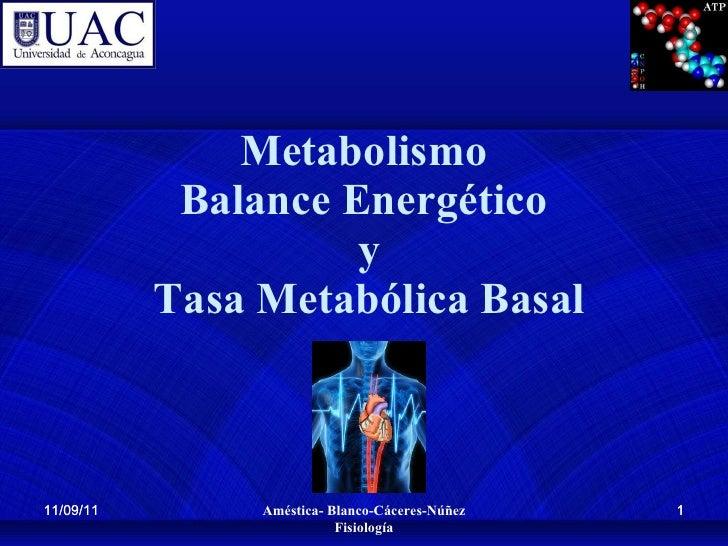 Metabolismo Balance Energético  y  Tasa Metabólica Basal 11/09/11 11/09/11 Améstica- Blanco-Cáceres-Núñez Fisiología