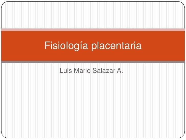 Luis Mario Salazar A.<br />Fisiologíaplacentaria<br />