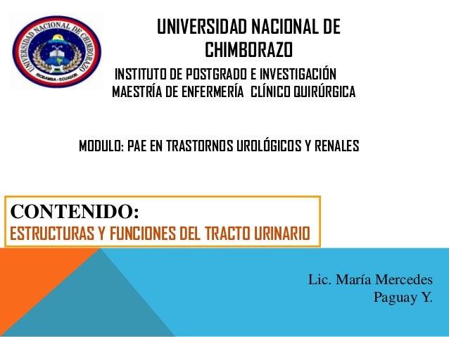 UNIVERSIDAD NACIONAL DE CHIMBORAZO INSTITUTO DE POSTGRADO E INVESTIGACIÓN MAESTRÍA DE ENFERMERÍA CLÍNICO QUIRÚRGICA MODULO...