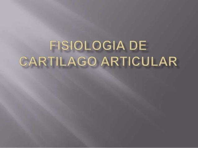  El cartílago articular es un tejido hipocelular, avascular, alinfático  Contiene una matriz de colágeno y proteoglucano...